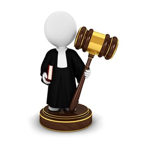 Litigation Process